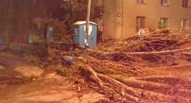 Orkan Grzegorz szaleje na Mokotowie: