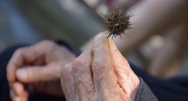 81-letnia Sabina S. zaginęła na Mokotowie, odnalazła się w Ursusie cała i zdrowa